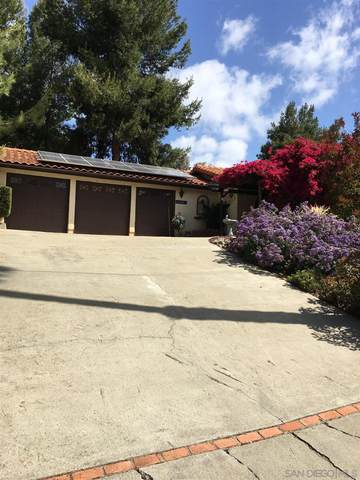 23564 Barona Mesa Road, Ramona, CA 92065 (#210013925) :: Neuman & Neuman Real Estate Inc.