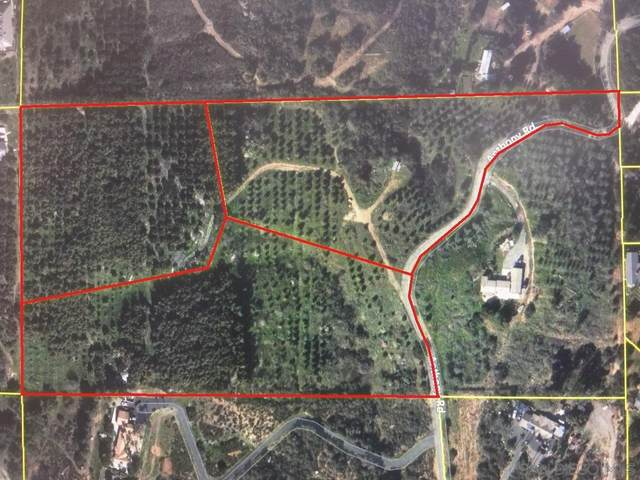 15.89 acres on Anthony Rd ., Valley Center, CA 92082 (#210014231) :: Keller Williams - Triolo Realty Group
