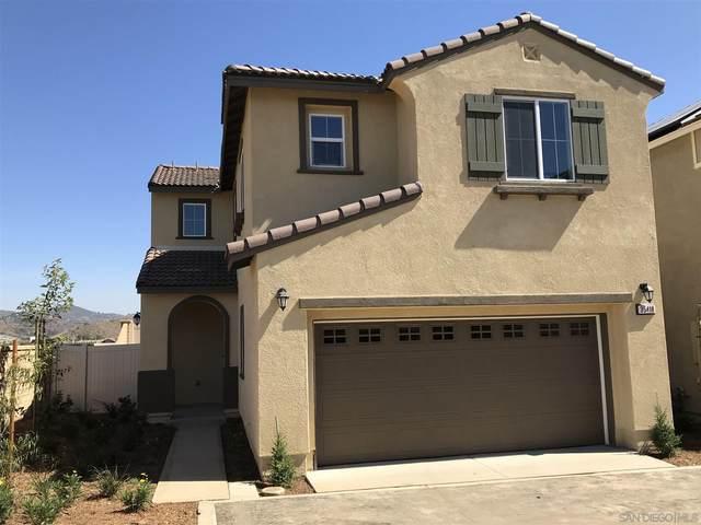 35418 Brown Galloway Lane, Fallbrook, CA 92028 (#210014428) :: Keller Williams - Triolo Realty Group
