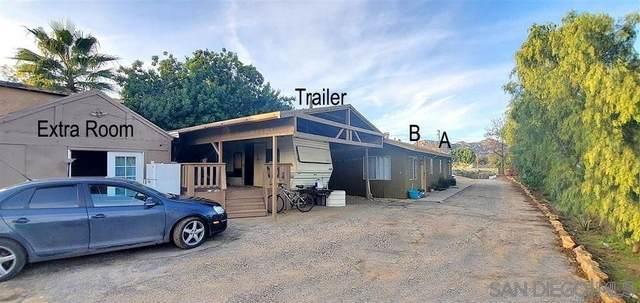 2017 Rainbow Valley Blvd, Fallbrook, CA 92028 (#210015094) :: Neuman & Neuman Real Estate Inc.