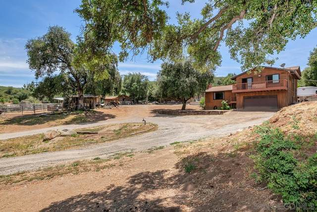 9630 Garwood Rd, Descanso, CA 91916 (#210015338) :: Team Forss Realty Group