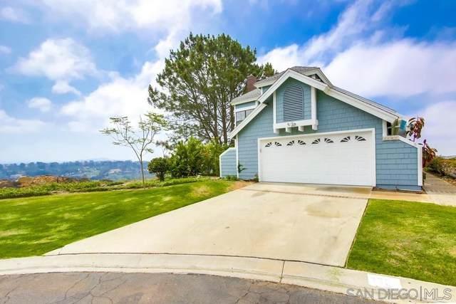 3602 Garner Place, Encinitas, CA 92024 (#210015493) :: Neuman & Neuman Real Estate Inc.