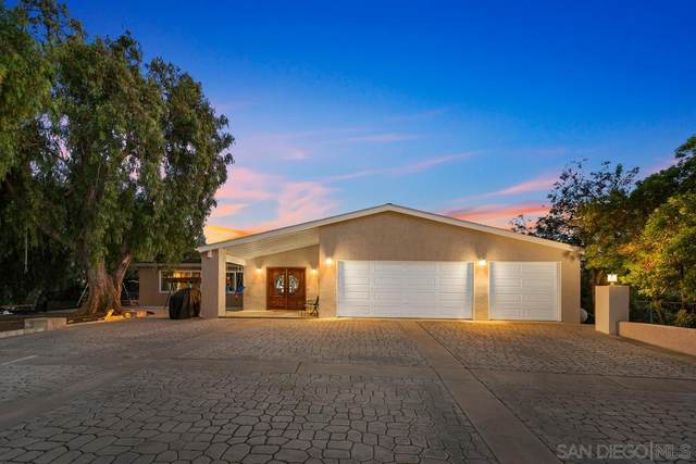 14609 Olive Vista Dr, Jamul, CA 91935 (#210015870) :: Neuman & Neuman Real Estate Inc.