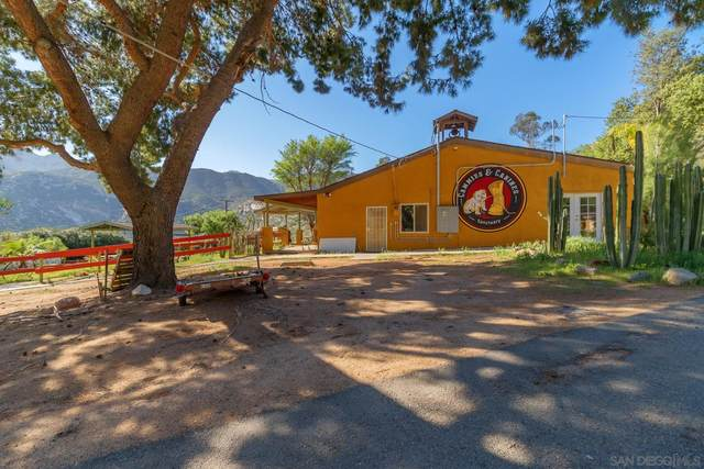 1375 Barrett Lake Road #0, Dulzura, CA 91917 (#210016265) :: Neuman & Neuman Real Estate Inc.