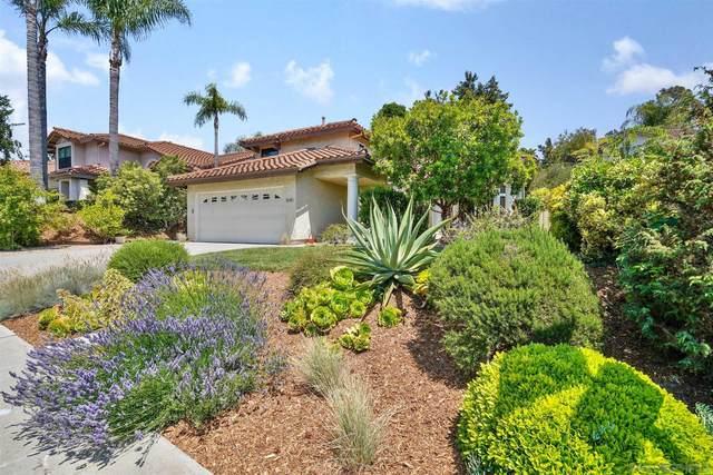 1645 Avenida La Posta, Encinitas, CA 92024 (#210016933) :: Windermere Homes & Estates