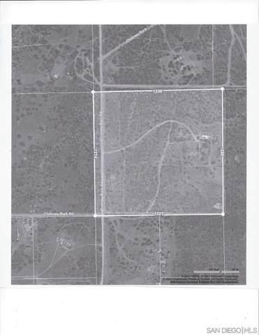 2941 Chimney Rock Rd, Ranchita, CA 92066 (#210018342) :: Neuman & Neuman Real Estate Inc.