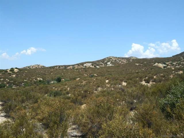 Old Mine Road #196, Ranchita, CA 92066 (#210018549) :: Neuman & Neuman Real Estate Inc.