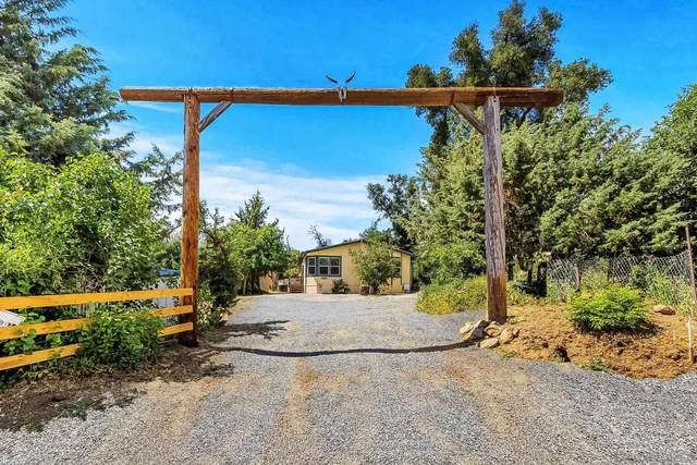 17340 Iron Springs Rd, Julian, CA 92036 (#210018936) :: Neuman & Neuman Real Estate Inc.