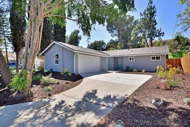10350 Fairhill Dr, Spring Valley, CA 91977 (#210020130) :: Team Forss Realty Group