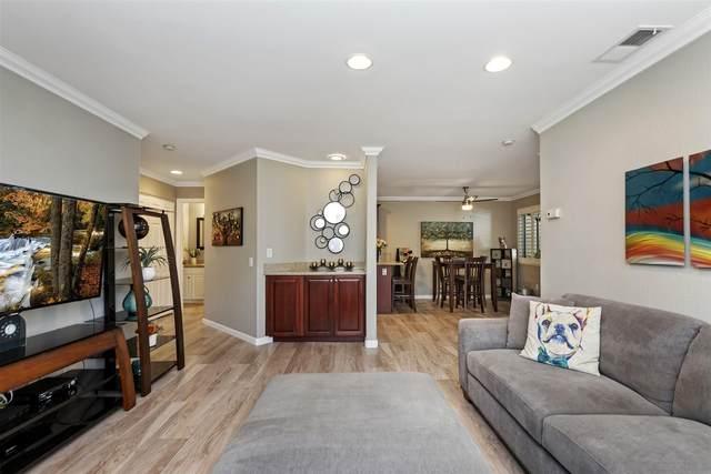 3521 Paseo De Elenita #161, Oceanside, CA 92056 (#210020723) :: Neuman & Neuman Real Estate Inc.