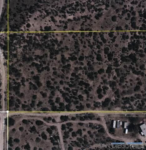 000 NE Lease Road #45, Ranchita, CA 92066 (#210021045) :: Neuman & Neuman Real Estate Inc.