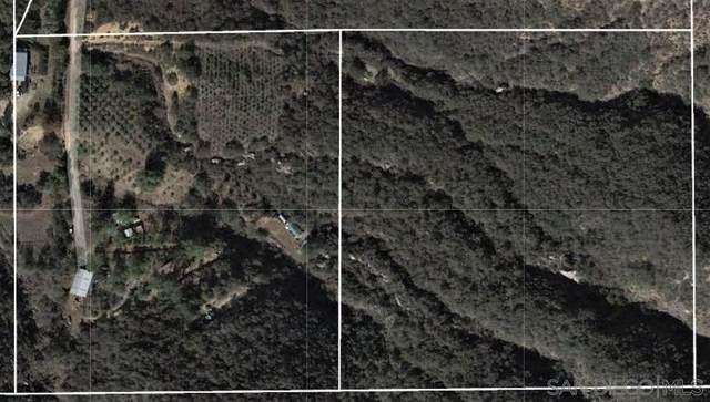 41093 De Luz Murrieta Rd, Fallbrook, CA 92028 (#210021328) :: Neuman & Neuman Real Estate Inc.