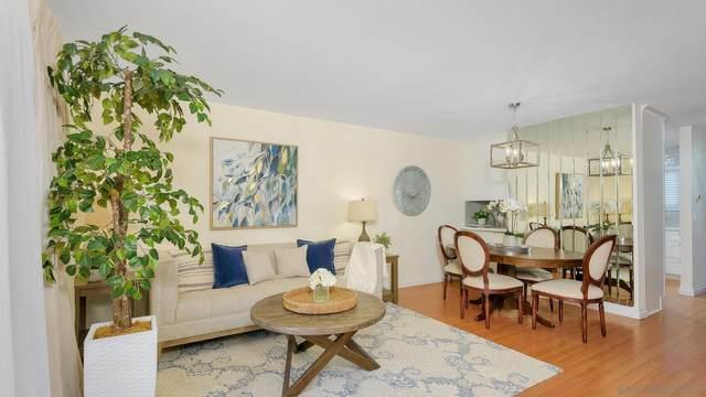 2019 Avenida De La Cruz, San Ysidro, CA 92173 (#210021694) :: Neuman & Neuman Real Estate Inc.