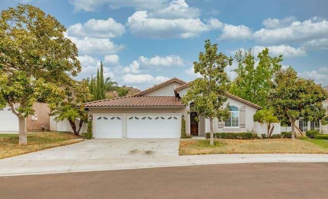 3167 Willow Creek Pl, Escondido, CA 92027 (#210021802) :: Zember Realty Group