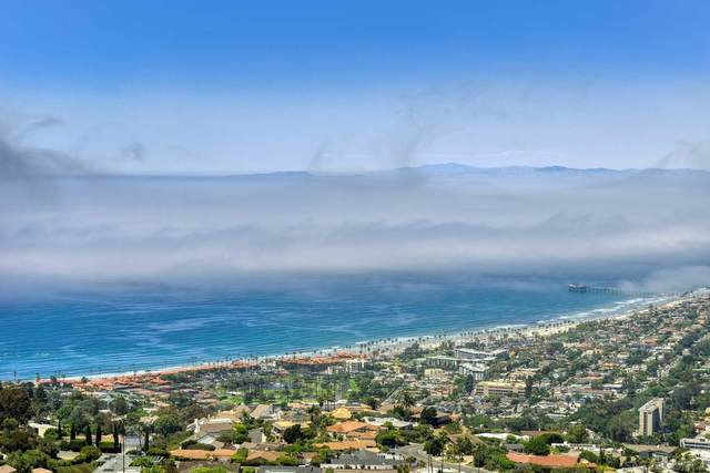 2052 Via Casa Alta, La Jolla, CA 92037 (#210022251) :: SD Luxe Group