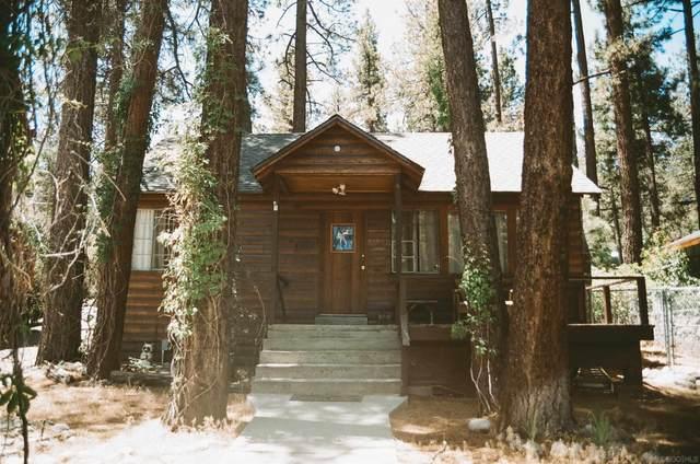 1125 Edna St, Wrightwood, CA 92397 (#210024499) :: Neuman & Neuman Real Estate Inc.