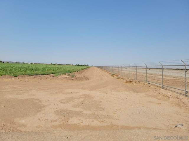 064-300-046 Airport Runway, Imperial, CA 92251 (#210025057) :: Wannebo Real Estate Group