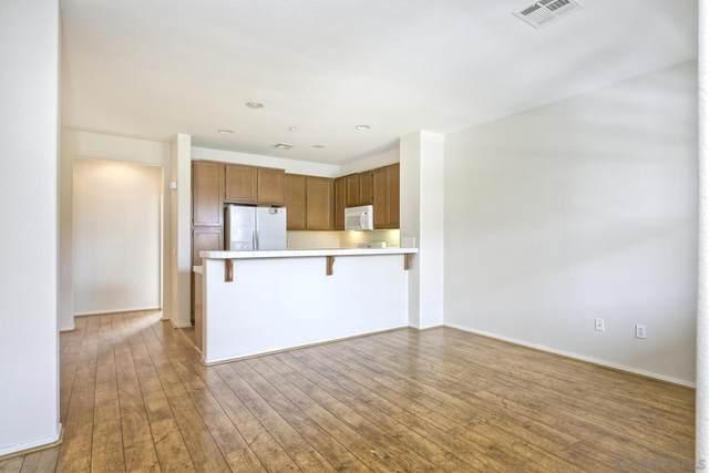 1588 Sumac Pl, Chula Vista, CA 91915 (#210028033) :: Rubino Real Estate