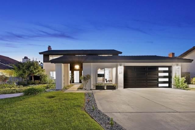 651 Solana Hills Ct, Solana Beach, CA 92075 (#210028130) :: Prestige Properties Enterprises