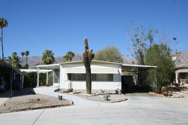 1010 Palm Canyon Dr #101, Borrego Springs, CA 92004 (#210028654) :: Neuman & Neuman Real Estate Inc.