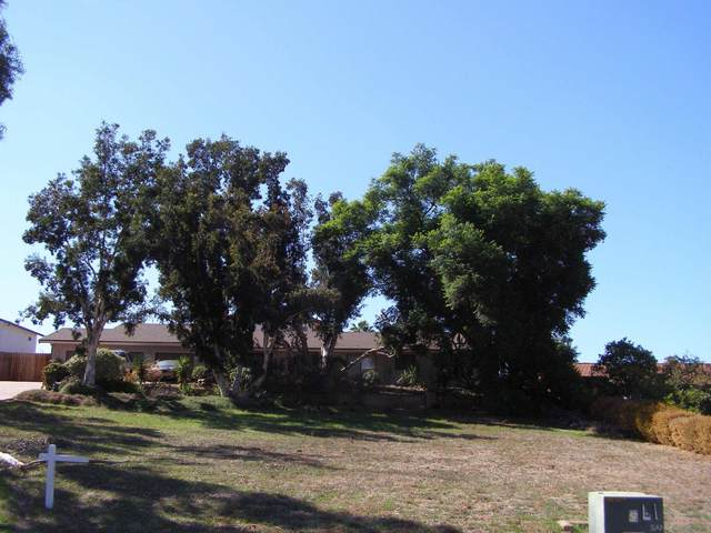 925 Moody Dr., Escondido, CA 92027 (#210029447) :: Neuman & Neuman Real Estate Inc.