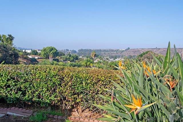 6730 Clara Lee Ave, San Diego, CA 92120 (#200046694) :: San Diego Area Homes for Sale