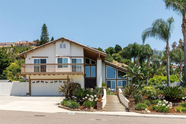2909 Cacatua St., Carlsbad, CA 92009 (#170032834) :: The Marelly Group | Realty One Group