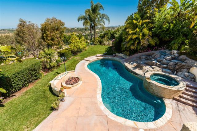 2862 Rancho Cortes, Carlsbad, CA 92009 (#170048661) :: Hometown Realty