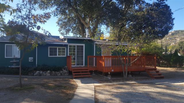 2436 Gladiola Drive, Campo, CA 91906 (#170057635) :: Neuman & Neuman Real Estate Inc.