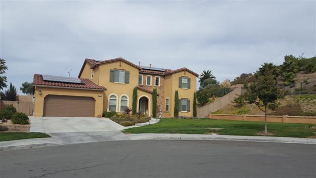 1849 Corte Galeana, Chula Vista, CA 91914 (#170057829) :: Whissel Realty