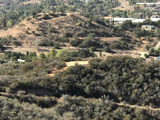 5th Street #0, Fallbrook, CA 92028 (#170058624) :: Neuman & Neuman Real Estate Inc.
