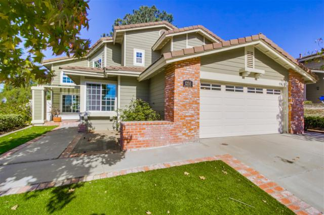 1255 Calle Christopher, Encinitas, CA 92024 (#170061718) :: PacifiCal Realty Group