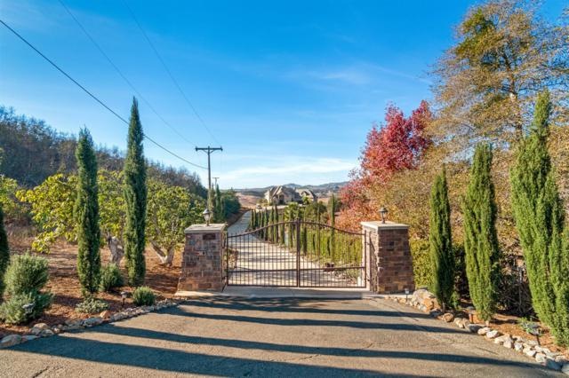 1301 Chariot Ct, Bonsall, CA 92003 (#180001574) :: The Marelly Group | Realty One Group