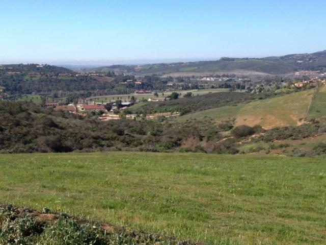 0 Lilac Road W. #0, Bonsall, CA 92003 (#180001933) :: Whissel Realty