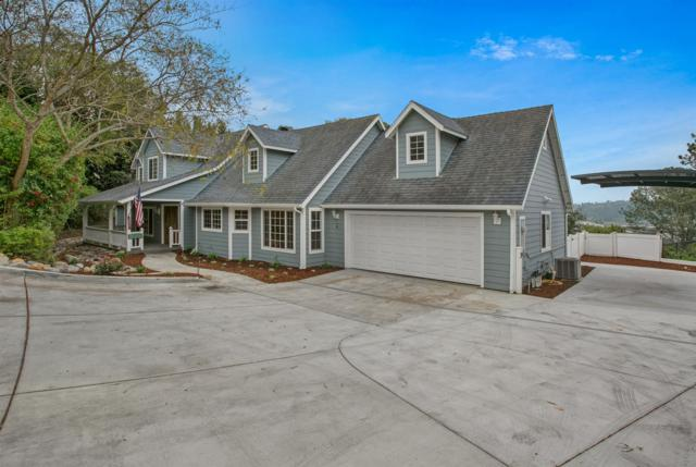 869 Avocado Place, Del Mar, CA 92014 (#180014141) :: PacifiCal Realty Group