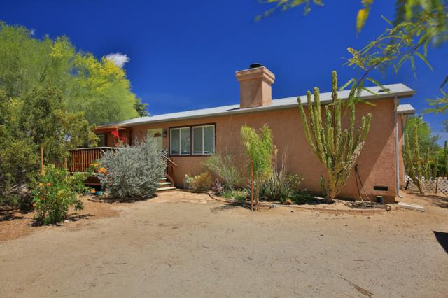 1955 Fenoval Dr, Borrego Springs, CA 92004 (#180017548) :: The Yarbrough Group