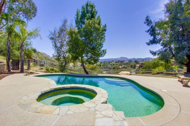 1869 Scenic View Pl, Alpine, CA 91901 (#180018350) :: Heller The Home Seller