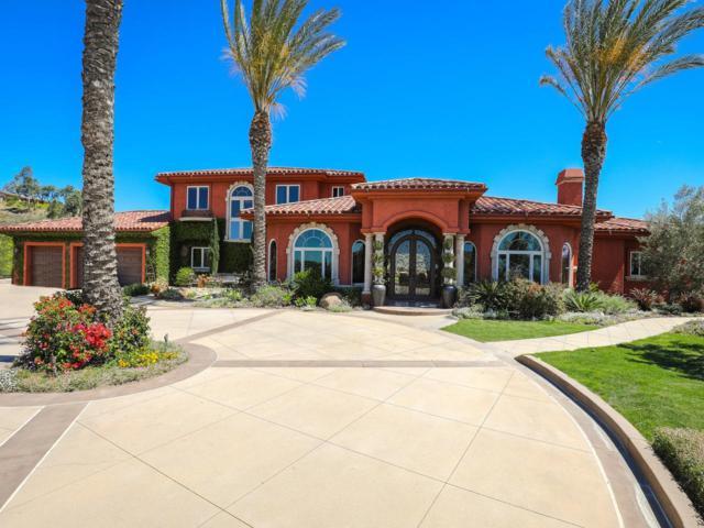 16990 Deer Hill Estates, Lakeside, CA 92040 (#180019267) :: Neuman & Neuman Real Estate Inc.