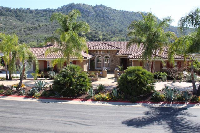 14737 Interlachen Ter, Valley Center, CA 92082 (#180022378) :: Heller The Home Seller