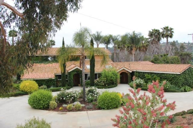 1569 Via Monserate, Fallbrook, CA 92028 (#180024875) :: The Yarbrough Group