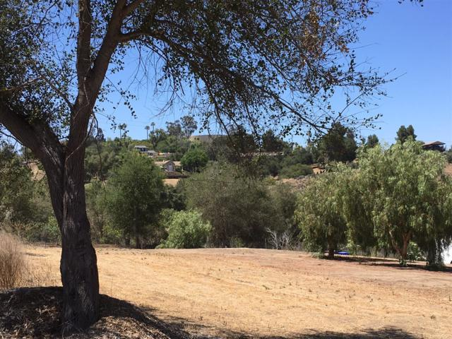 Riverview Dr@ M R Ranch 71-Parcel 3, Fallbrook, CA 92028 (#180030193) :: The Yarbrough Group