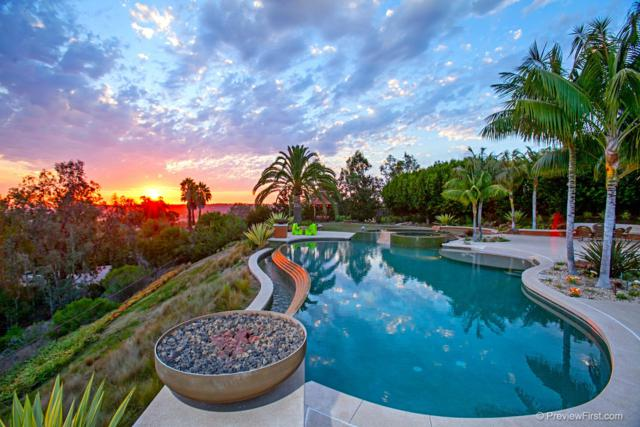 14821 Rancho Valencia Vista, Rancho Santa Fe, CA 92067 (#180031073) :: Coldwell Banker Residential Brokerage