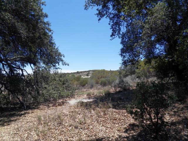 352 acres Jewel Valley Rd #51, Boulevard, CA 91905 (#180031926) :: Neuman & Neuman Real Estate Inc.