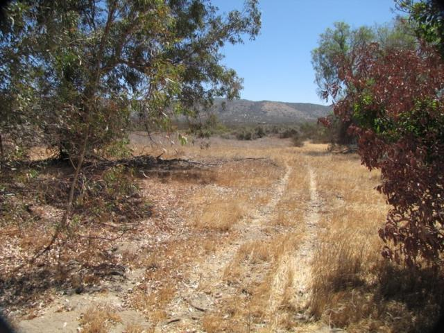 0 Hwy 79 6.25 ACRES 112-030-37-00, Warner Springs, CA 92086 (#180033827) :: Keller Williams - Triolo Realty Group