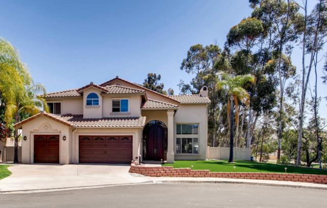 10405 White Birch Dr., San Diego, CA 92131 (#180036370) :: The Yarbrough Group