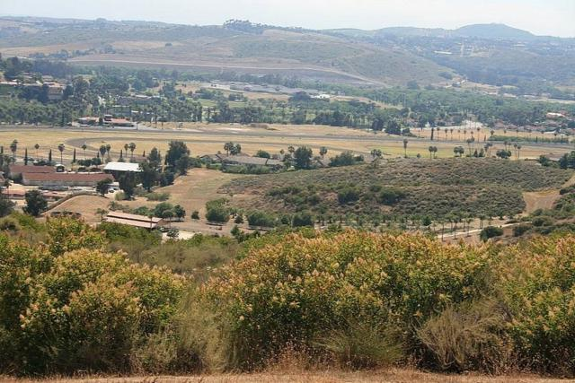 000 W Lilac Road #0, Bonsall, CA 92003 (#180040271) :: Whissel Realty
