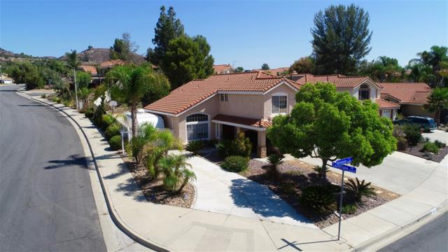 26853 Valensole Ct, Murrieta, CA 92562 (#180044745) :: Douglas Elliman - Ruth Pugh Group