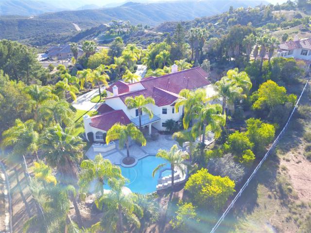 2121 Corte Dorado Espuela, Alpine, CA 91901 (#180045416) :: Keller Williams - Triolo Realty Group