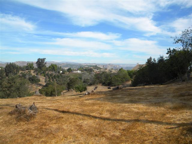000 Hillcrest View Lane #17, Fallbrook, CA 92028 (#180047788) :: Jacobo Realty Group