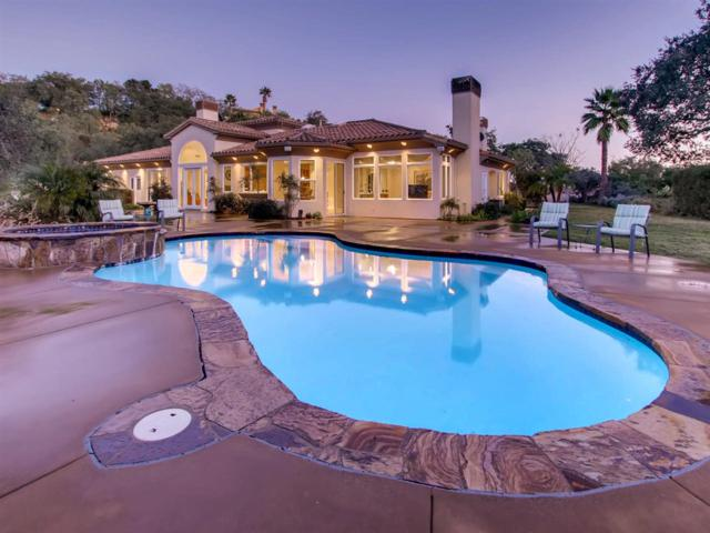 14382 Ridge Ranch Rd, Valley Center, CA 92082 (#180050207) :: Steele Canyon Realty